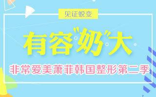 非常爱美萧菲韩国整形第二季