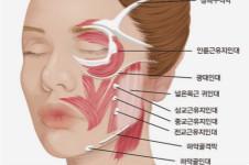 科普:韩国医院面部除皱的好方法!