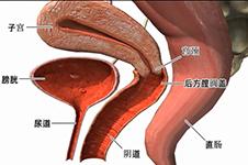 韩国排名靠前的妇科整形医院,能做阴道紧缩的有哪些?