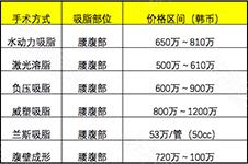 韩国几种常见腹部吸脂价格表曝光,没有谁单纯只吸腰腹!