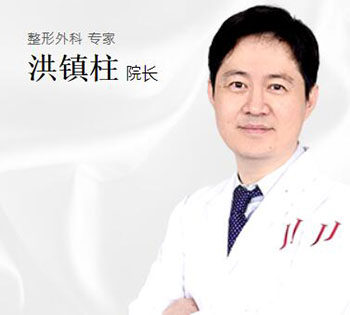 韩国JJ洪镇柱整形外科洪镇柱院长照片