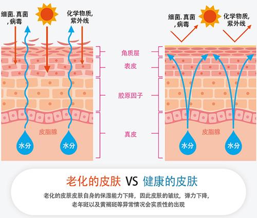 韩国bk医院肌肤状况分析图