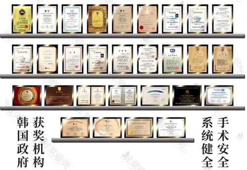 韩国娜娜NANA整形医院荣誉证书