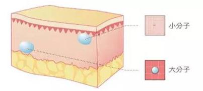 玻尿酸分子图片