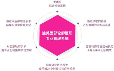 韩国迪美面部轮廓整形专业管理系统