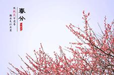 韩整形美容节气百科——说「春分」