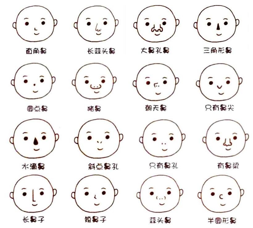 韩国鼻翼缩小价格表 鼻子卡通图