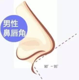 男性隆鼻整形-鼻唇角角度