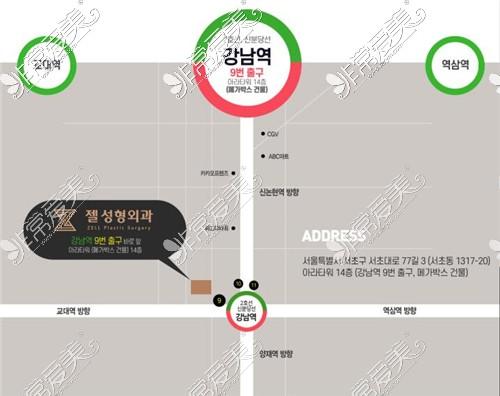 韩国zell整形外科到院方式示意图